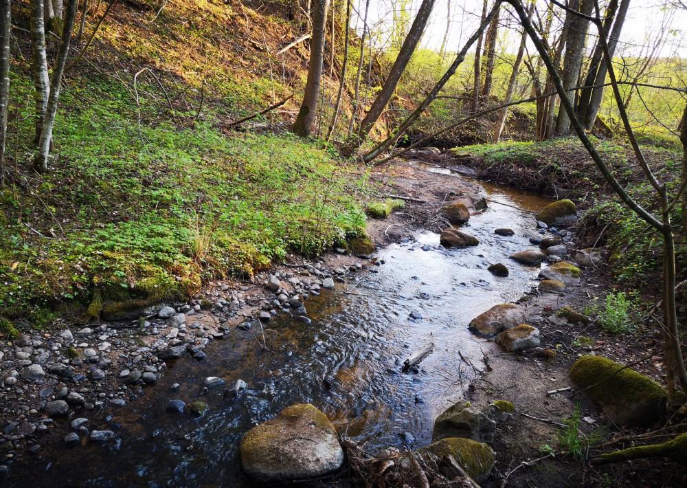 Lietavos upelis