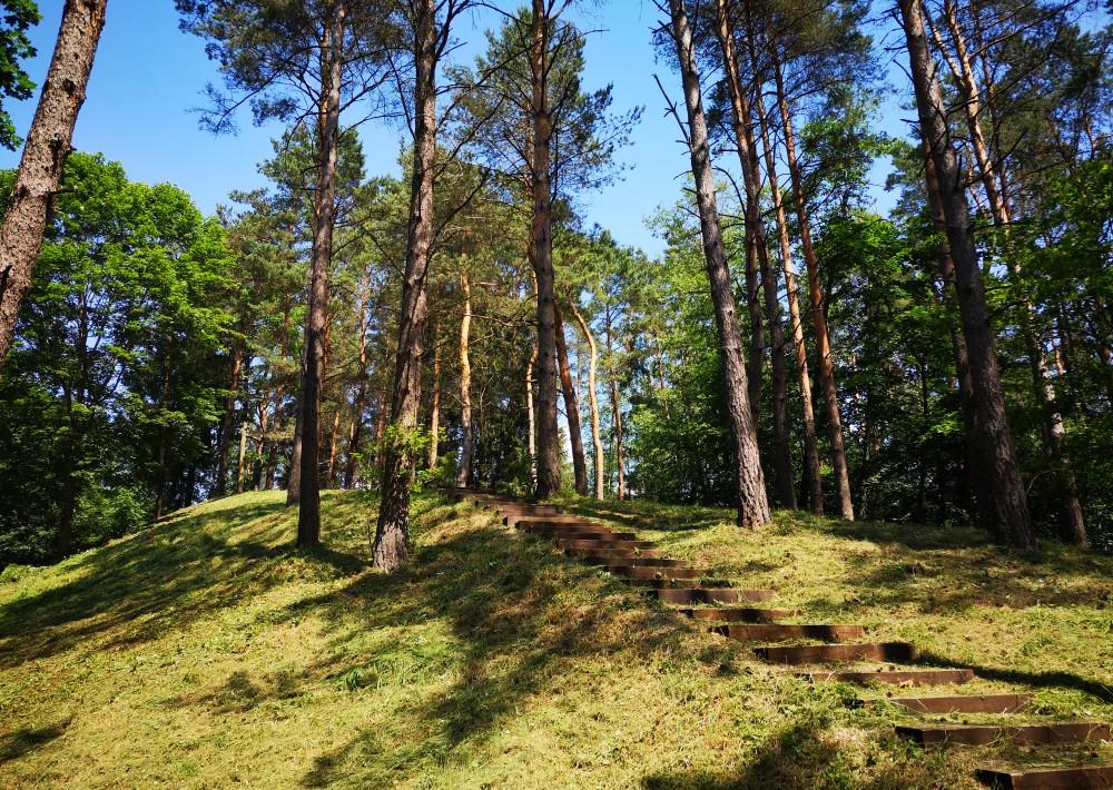Dubių piliakalnis